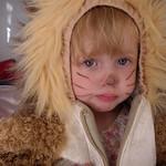 Olivia the Lion