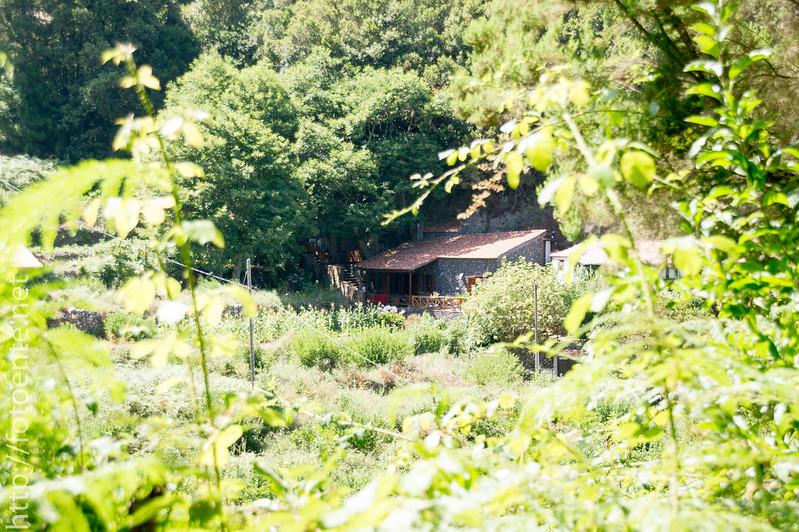 Urwald Hacienda