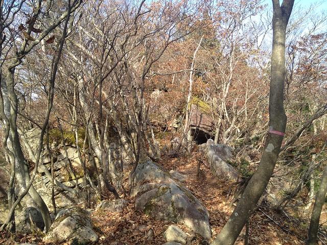 天狗堂 展望岩への道