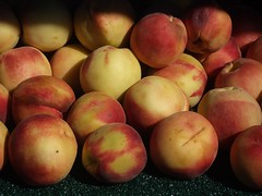 Nectarines | by The Marmot