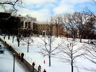 Skiing on Bascom Mall | by Ann Althouse
