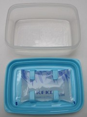 Chilled bento box with built-in gel pack | by Biggie*