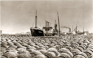 Sète- Port Du Vin - France 1934 | by jipol