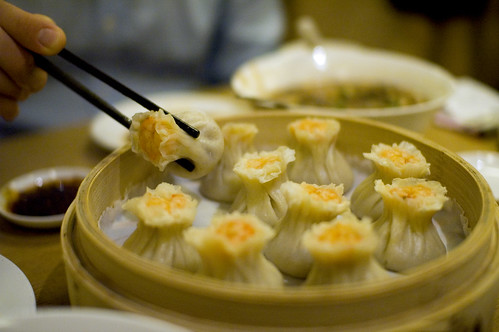 Best Dumplings in the World | by Stewart