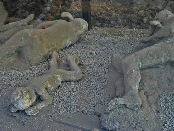 Cast of Pompeii Victims