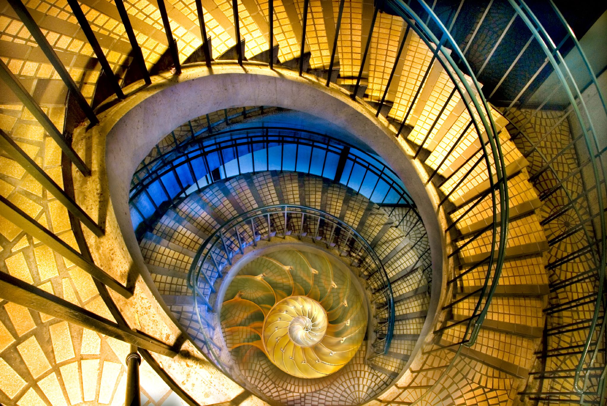Spirals © Harold Davis