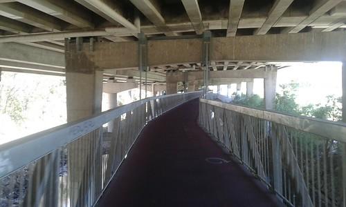 Gardiners Creek Trail under CityLink