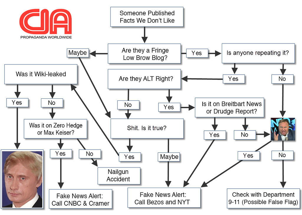 FAKE NEWS FLOW CHART