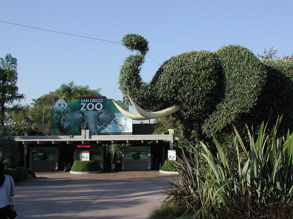 動物園,おすすめ,都内,デート,人気,ふれあい,画像