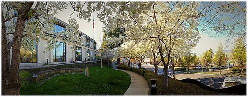 Ashland Branch Photos