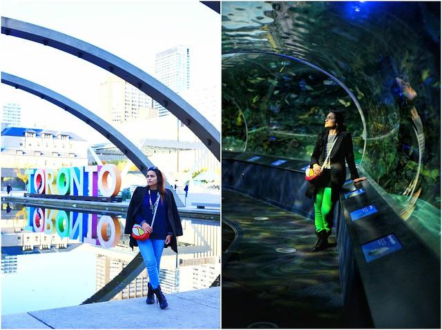 Toronto Tanvii.com 38