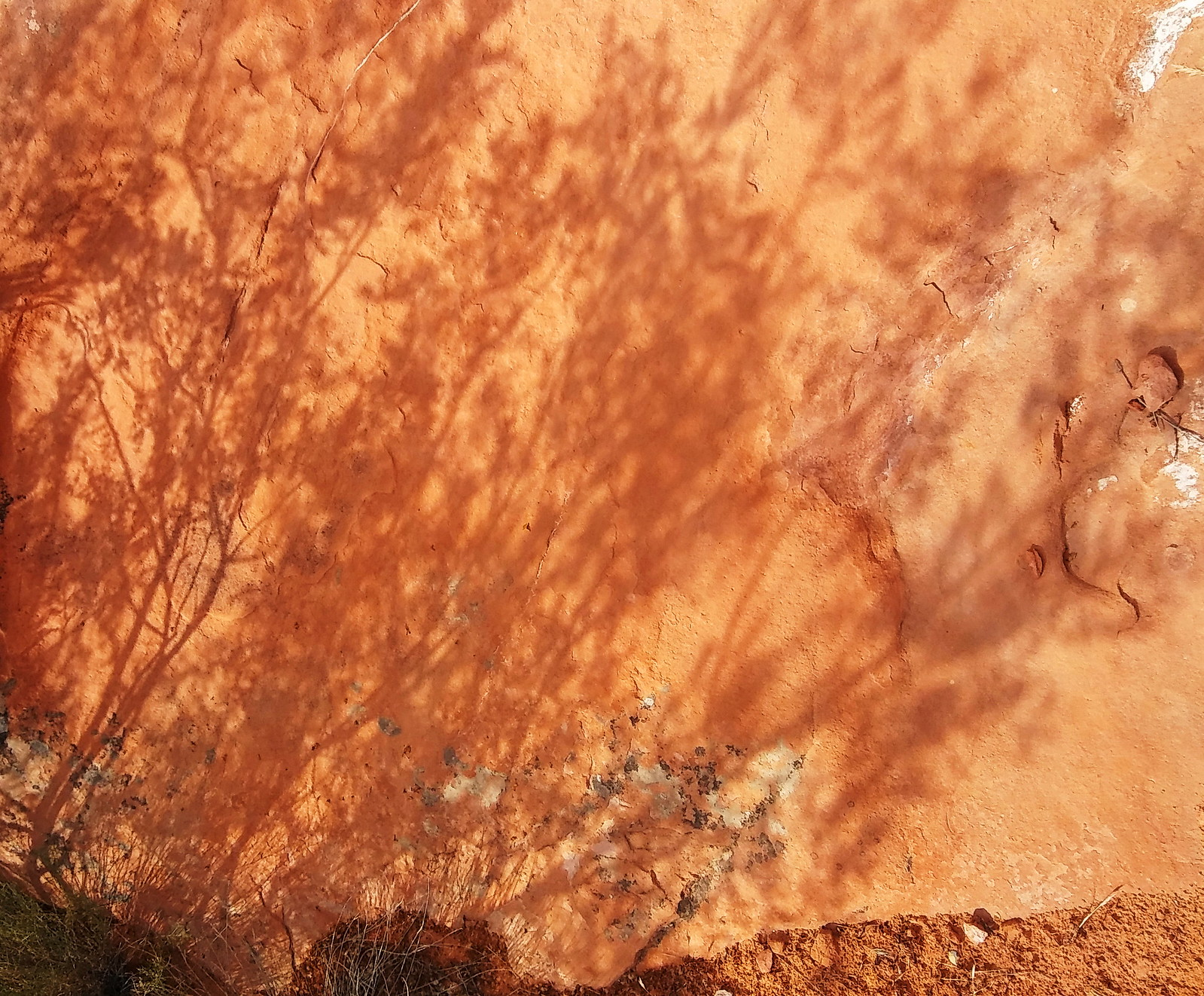 Spying eyes, Valley of Fire, Nevada