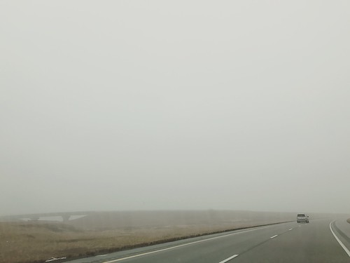 super foggy morning drive home, holiday road trip coming to an end #roadtrip