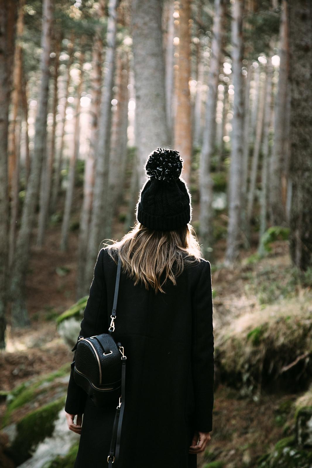 woods-10