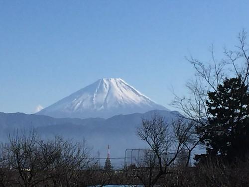 実家から元旦の富士山