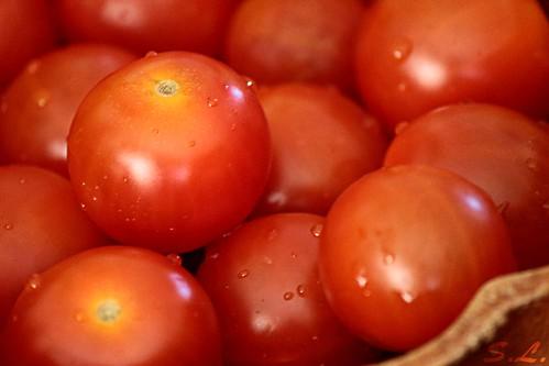 Aperi - Tomates