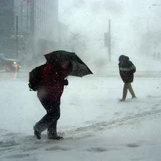 Shoppers Heading Home in the Blizzard | by wmacphail