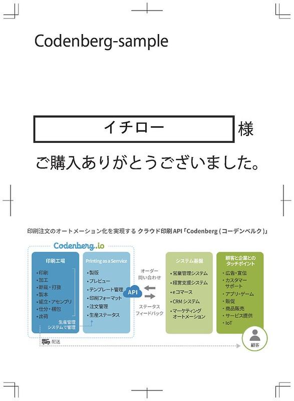 codenberg_print