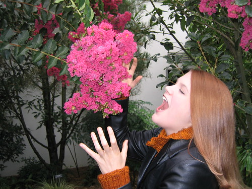 Eating a flower in Chinese Garden 2005