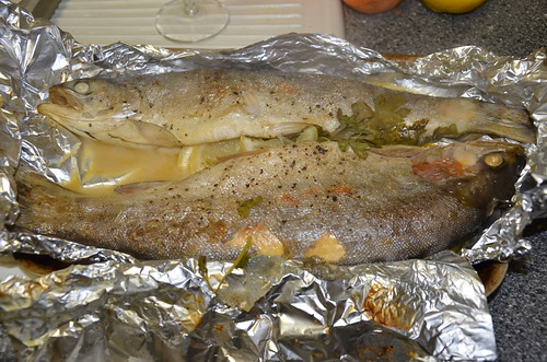 baked trout Dec 16 (1)