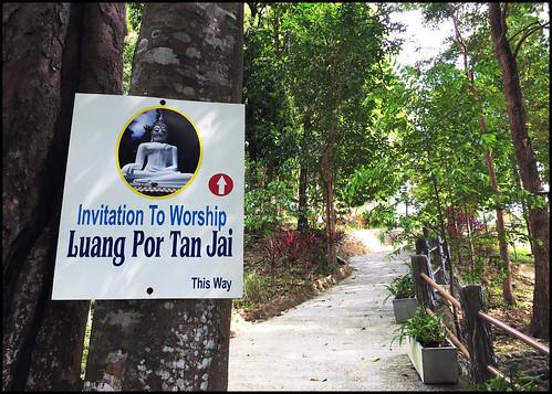 Path to the Buddha