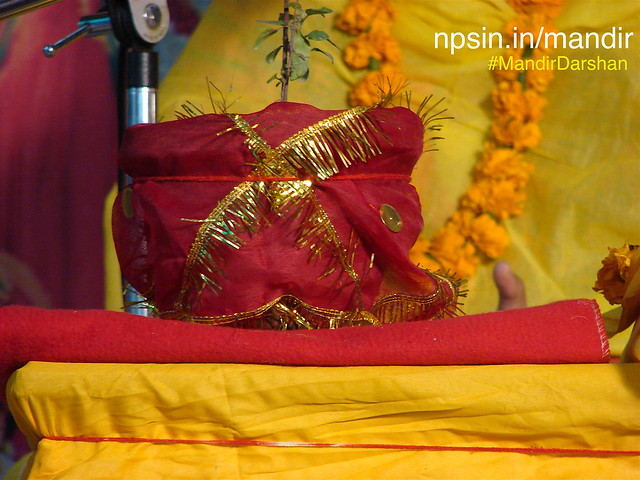 तुलसी विवाह (Tulsi Vivah) is marriage ritual of Maa Tulsi and Lord Vishnu. During this festival all wedding related rituals performed including Kanyadan ceremony.