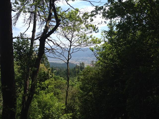 不破の滝 展望台からの眺望