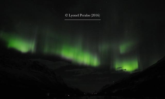 Northern_Lights_20_12_2016_VI