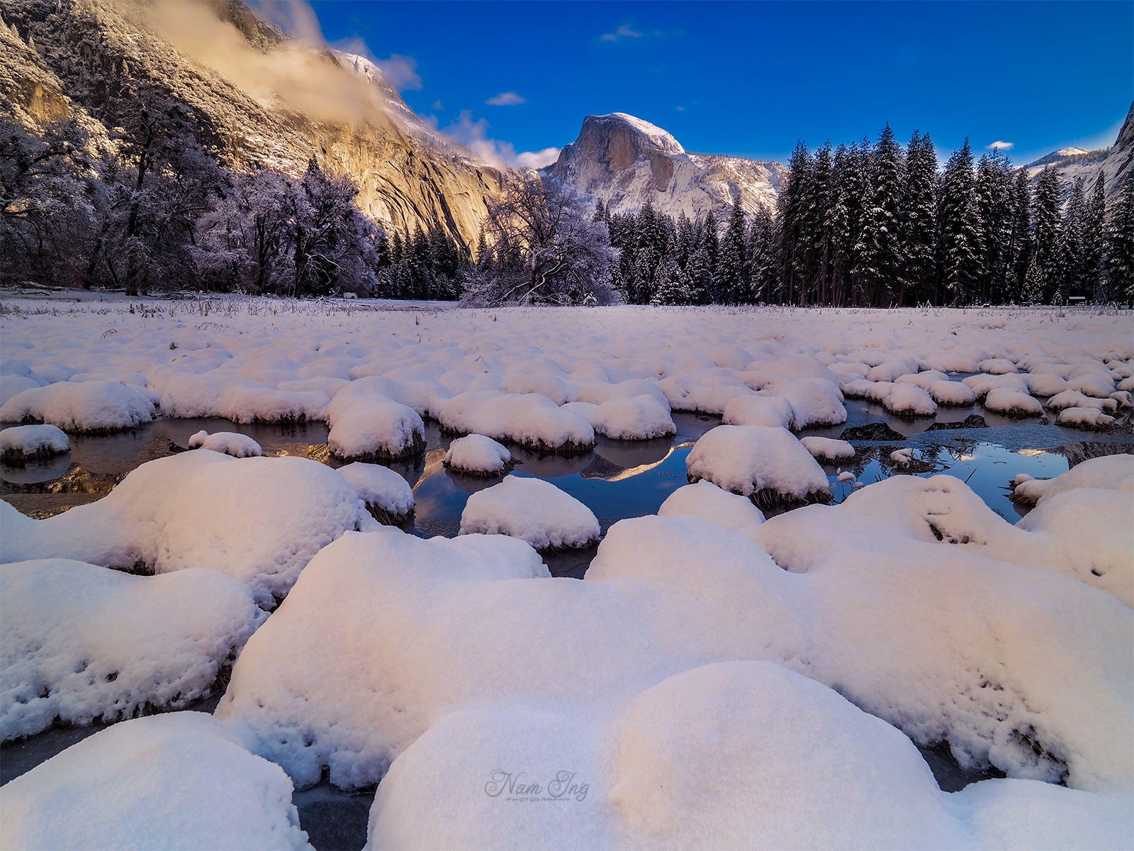 Noël au Yosemite 31749411812_e1e7f6dcb6_o