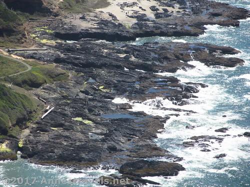 Tide pools in the lava flows, Cape Perpetua, Oregon