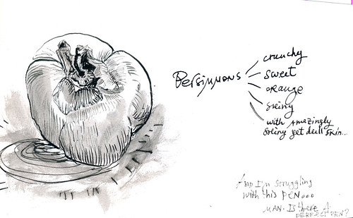 Sketchbook #101: Persimmon