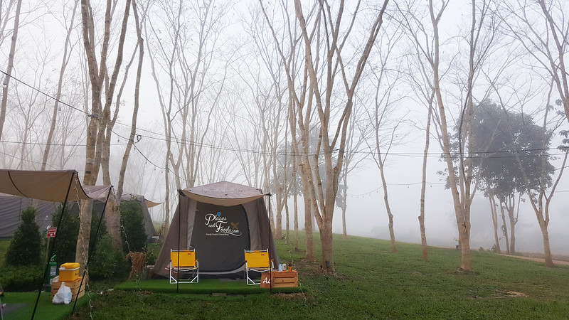 glamping camps