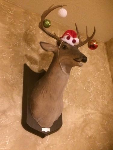 Bye Rudolf