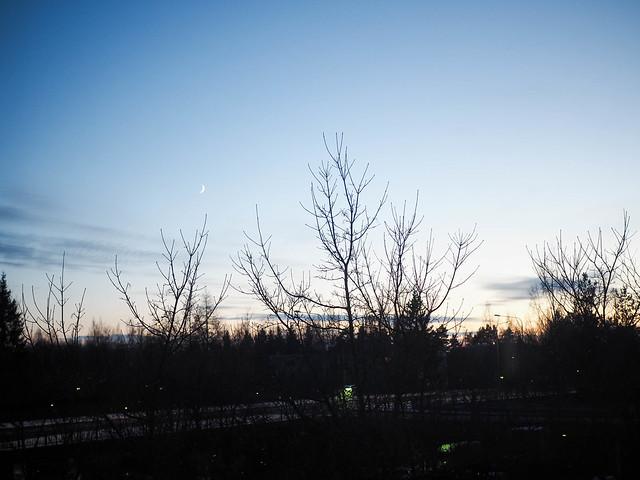 sky, sunset, blue sky, sininen taivas, winter, talvi, suomi, finland, sunset, auringonlasku talvella,