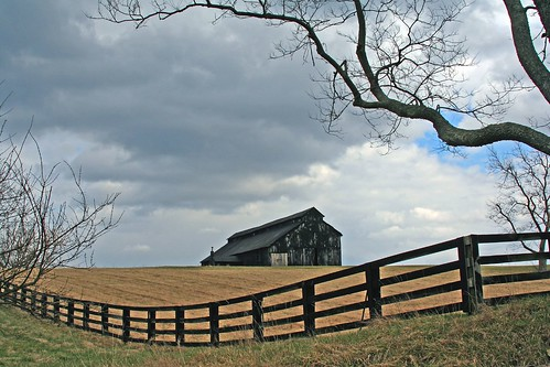 Barn, Fence, and Tree | by code poet