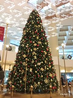 CIRCLEG 香港 金鐘 太古廣場 2016聖誕PACIFIC PLACE 遊記 聖誕 2016  (3)
