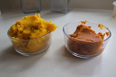 Fresh vs Canned Pumpkin Puree
