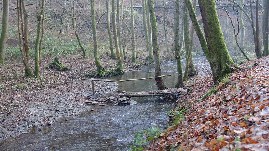 Brücke über den Brexbach - Wandern auf dem Saynsteig