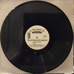 THE PRUNES:TRACKS FROM THE DARKSIDE(RECORD SIDE-A)