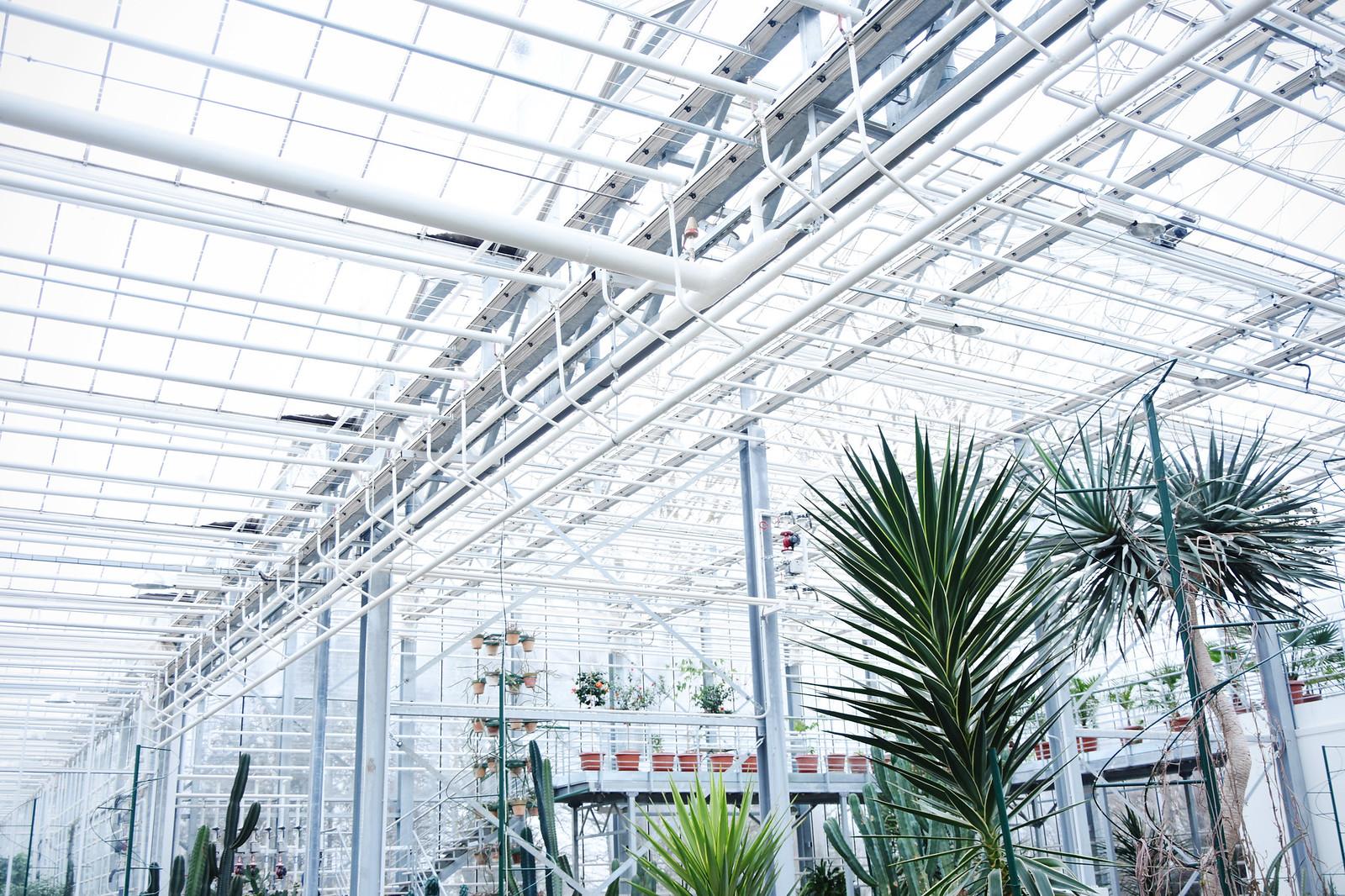 Salaspils botāniskais dārzs