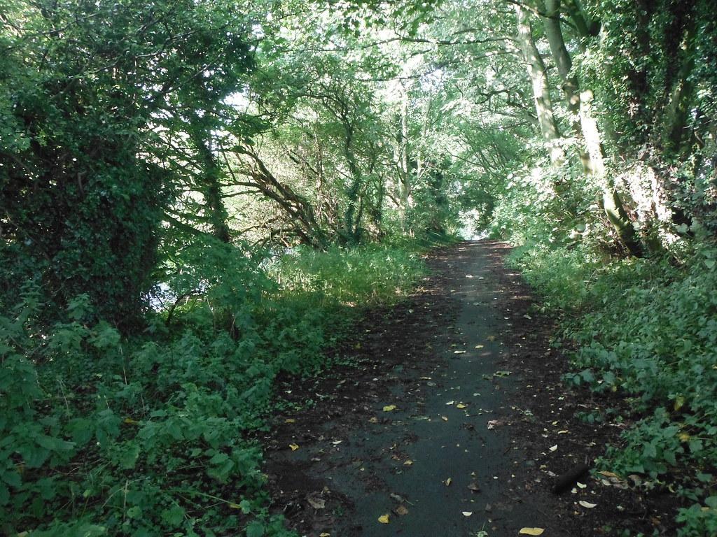 Near Barnoldswick