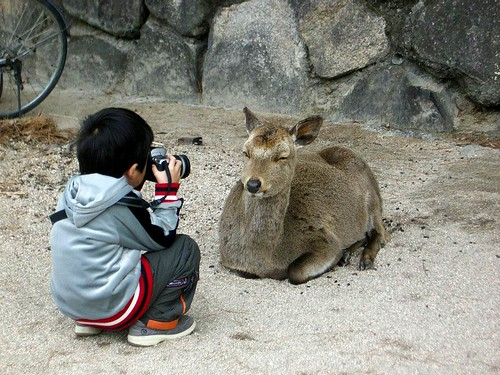 The innovative zoom lens... | by chishikilauren