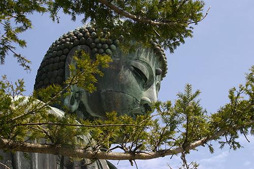 ¿Cuánto vale el buda de Kamakura?