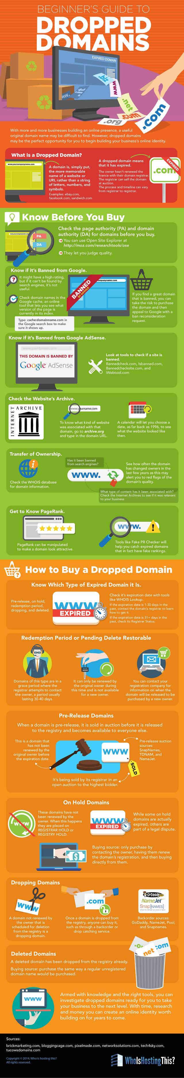comprar un dominio expirado infografía próximo tema