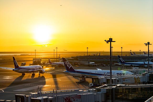 初日の出2017@羽田空港第2旅客ターミナル-24.jpg