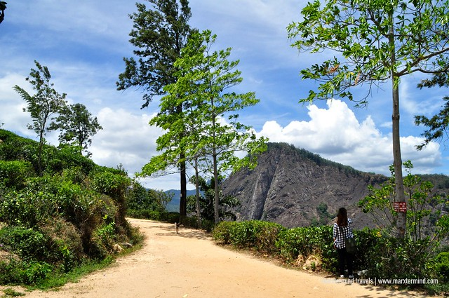 Trail to Little Adam's Peak
