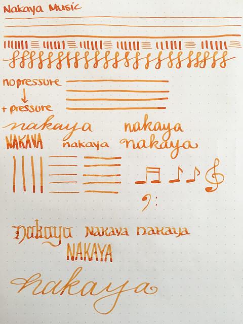 Nakaya Nibs & Video Elastic, Medium, Medium Soft, Broad, Music @Iguana_Sell 20