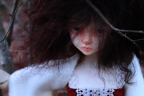 [KDF Bory] Grace - L'enfant sauvage  31549984460_df813d678f