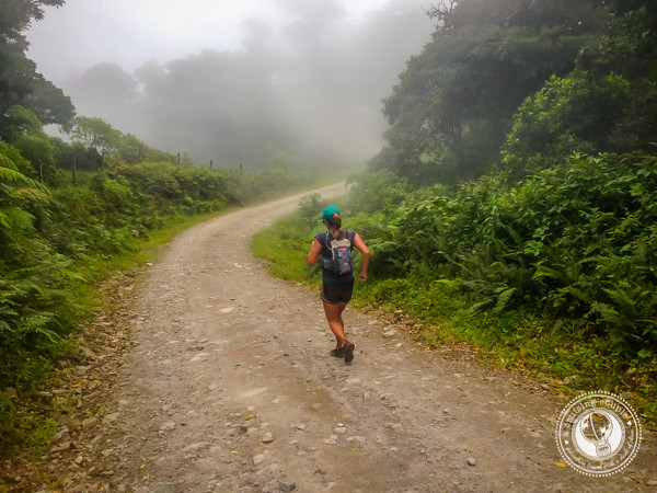 Running through the cloud forest during the Moon Run in Monteverde, Costa Rica