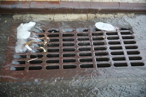 Trash Free Waters